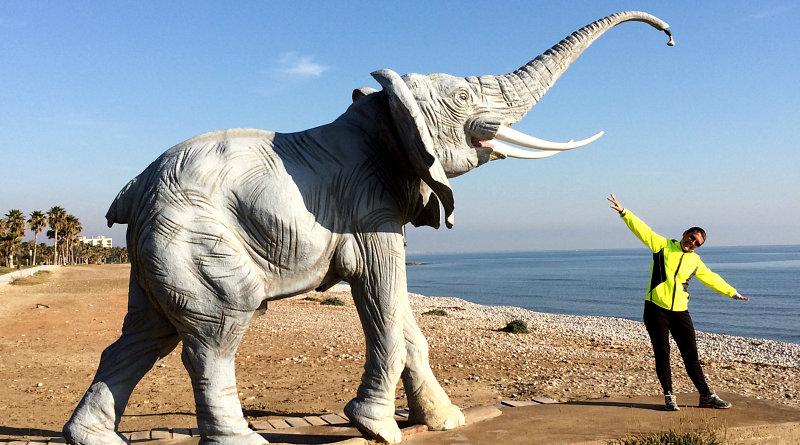 Elefanti sulla spiaggia a Marina d'Or