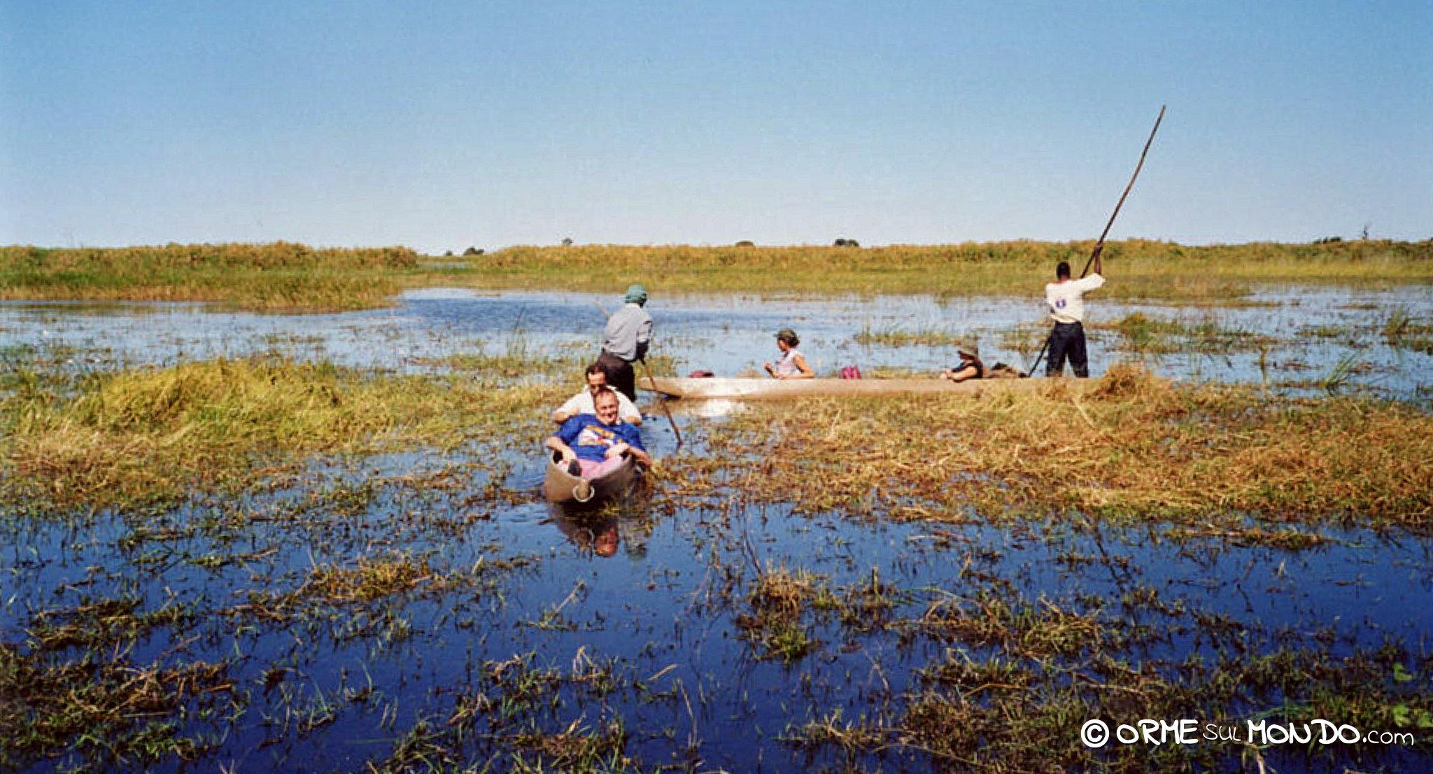 In mokioro lungo i canali del Delta dell'Okavango