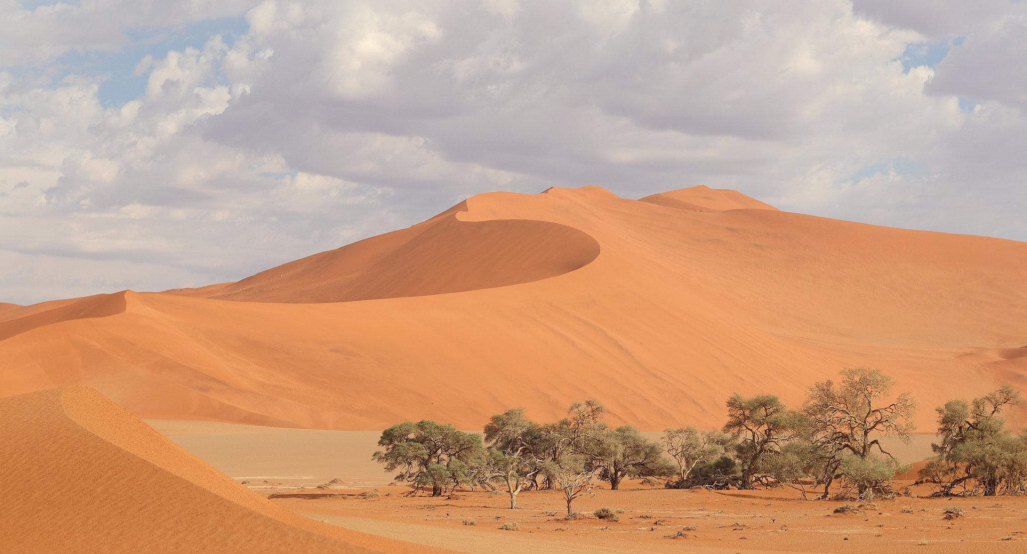 Una delle dune di Sossusvlei