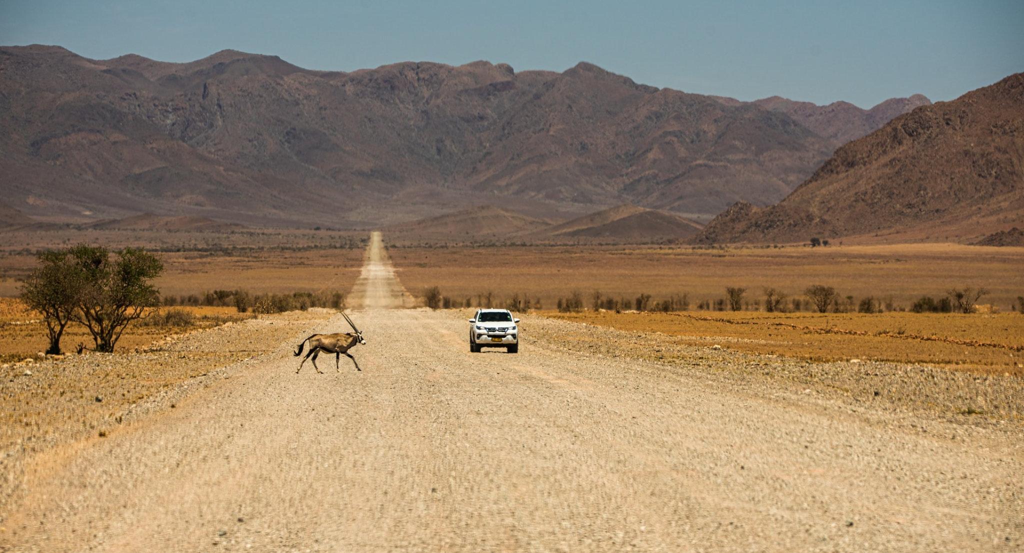 Una tipica strada battuta in Namibia