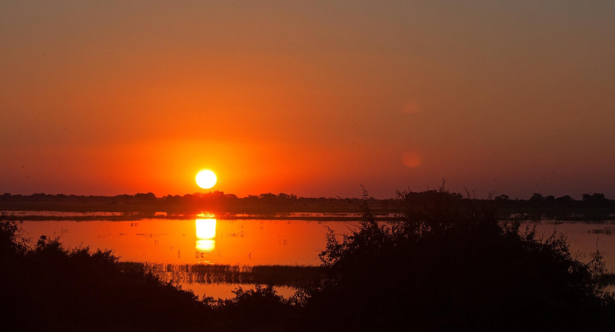 Tramonto sul fiume Chobe
